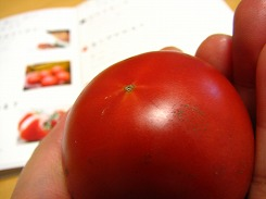 オイシックス(Oisix・おいしっくす)塩トマト お取り寄せ