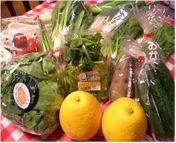 無農薬野菜のミレーミレー春の福袋♪送料・消費税・代引き手数料無料