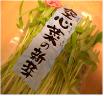 空心菜の新芽/おいしっくす(オイシックス/Oisix)