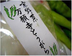 京野菜 万願寺とうがらし/おいしっくす(オイシックス/Oisix)