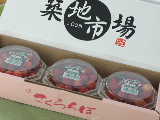 山形東根産『佐藤錦』(さくらんぼ)/ぐるなび食市場内築地市場ドットコム