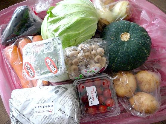 【閉店】矢田農園の旬の野菜&たまごセットは、使いまわし新鮮野菜ばかりで大助かりでした。