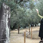 小豆島オリーブ園で日本最古のオリーブ原木を見ました。[オリーブを五感で楽しむ香川・小豆島の旅(2/10)]