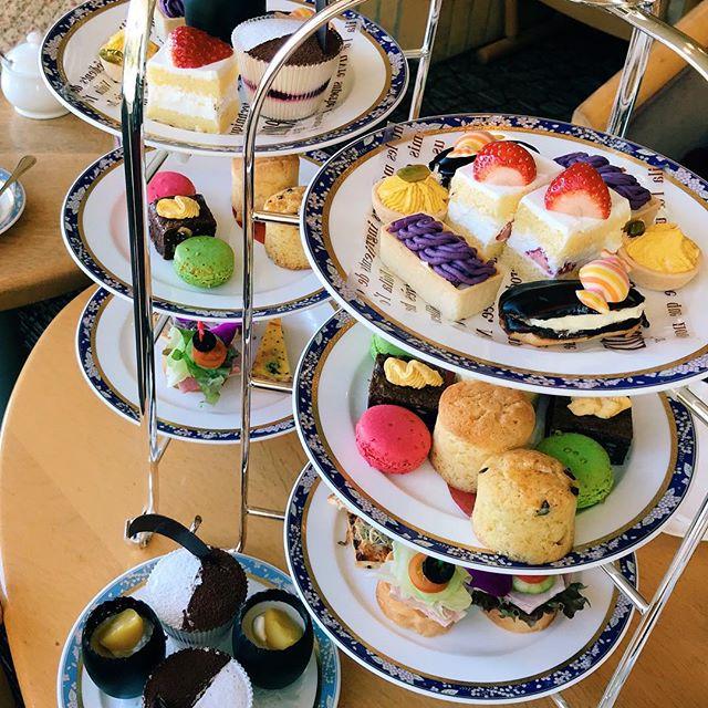 ️アフタヌーンティーもっといろいろ行ってみたいな。よく考えたらランチ行ってお茶してまたお茶してって思ったらお値段も妥当なことに今更気づいてここ数年で最近行くようになりました。 +++++ #アフタヌーンティー #鎌倉プリンスホテル #afternoontea #お茶の時間 #鎌倉 #鎌倉散歩 #kamakura #Japan #일본 #가마쿠라 #カフェ #カフェ巡り #cafe #カフェが好き #カフェ好きな人と繋がりたい #카페 #카페스타그램 #カフェ活 #カフェスタグラム【Instagram】